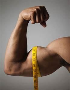 Mesure de biceps
