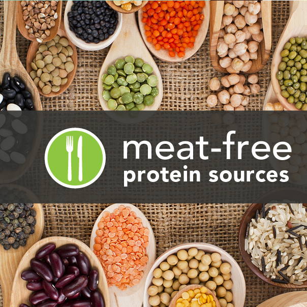 7-meat-free-proteins