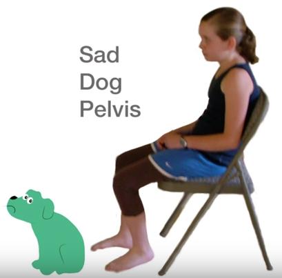 sad-dog-pelvis