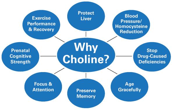 Why choline